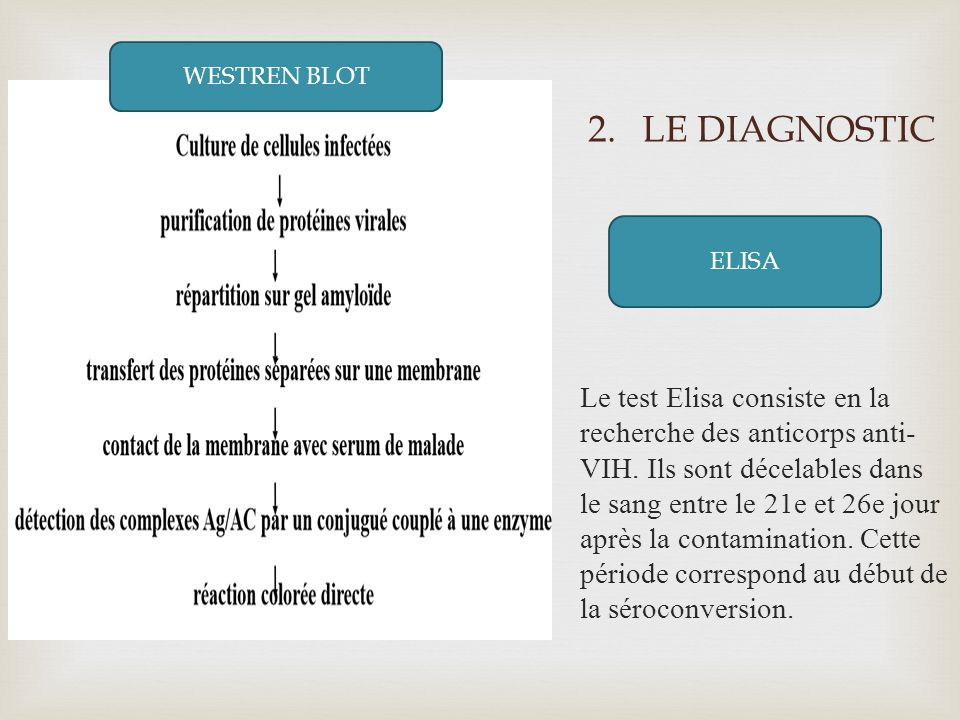 2.LE DIAGNOSTIC WESTERN BLOT Le test Elisa consiste en la recherche des anticorps anti- VIH. Ils sont décelables dans le sang entre le 21e et 26e jour