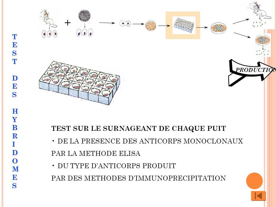 TEST SUR LE SURNAGEANT DE CHAQUE PUIT DE LA PRESENCE DES ANTICORPS MONOCLONAUX PAR LA METHODE ELISA DU TYPE DANTICORPS PRODUIT PAR DES METHODES DIMMUN