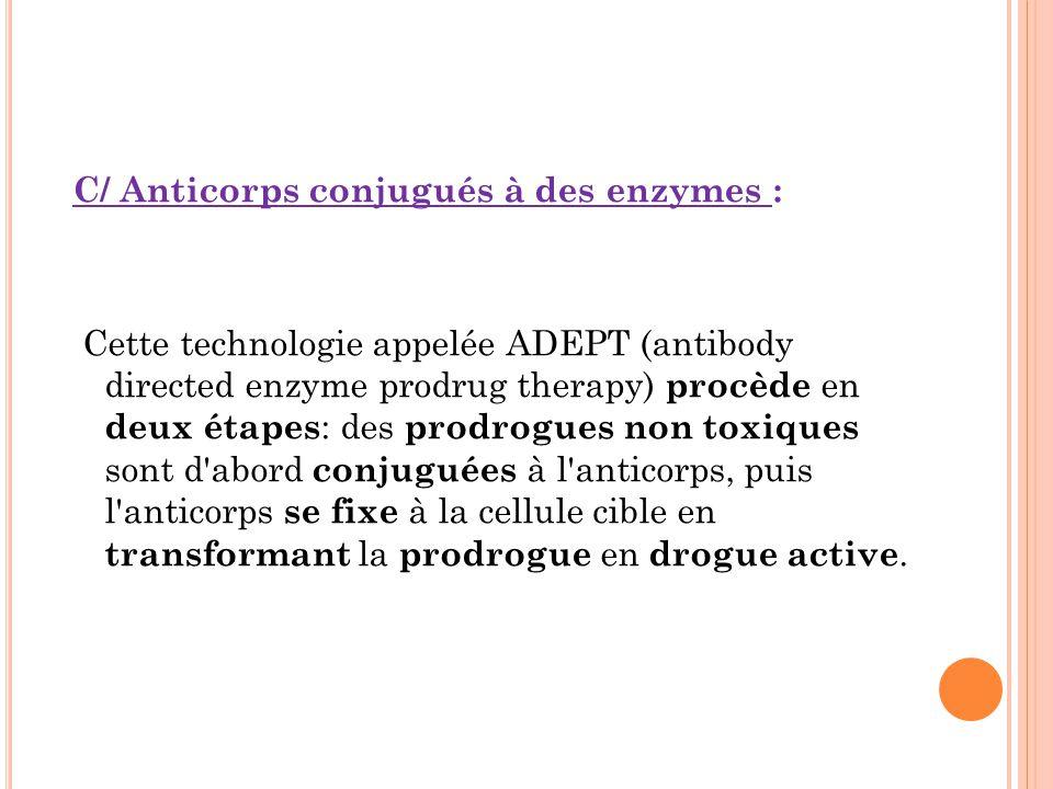 C/ Anticorps conjugués à des enzymes : Cette technologie appelée ADEPT (antibody directed enzyme prodrug therapy) procède en deux étapes : des prodrogues non toxiques sont d abord conjuguées à l anticorps, puis l anticorps se fixe à la cellule cible en transformant la prodrogue en drogue active.