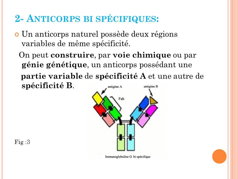 2- A NTICORPS BI SPÉCIFIQUES : Un anticorps naturel possède deux régions variables de même spécificité. On peut construire, par voie chimique ou par g