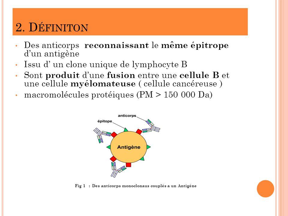 2. D ÉFINITON Des anticorps reconnaissant le même épitrope dun antigène Issu d un clone unique de lymphocyte B Sont produit dune fusion entre une cell