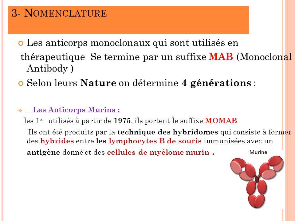 3- N OMENCLATURE Les anticorps monoclonaux qui sont utilisés en thérapeutique Se termine par un suffixe MAB (Monoclonal Antibody ) Selon leurs Nature