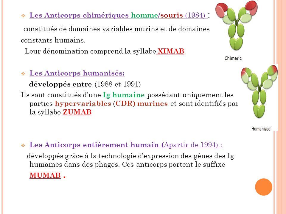 Les Anticorps chimériques homme/souris (1984) : constitués de domaines variables murins et de domaines constants humains. Leur dénomination comprend l