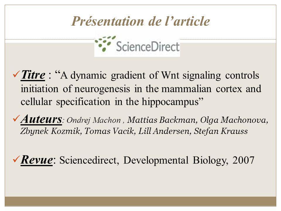 Introduction Le cortex cérébrale des mammifères: (figure a) Le siège des principales fonctions cognitives, dérive de la partie dorsale du télencéphale et son développement passe par des stades précoces de divisions (figure b) Ce développement nécessite des signaux inductifs et des facteurs de transcription tels que: Pax6 : favorise la production de neurones durant la division asymétrique des progéniteurs.