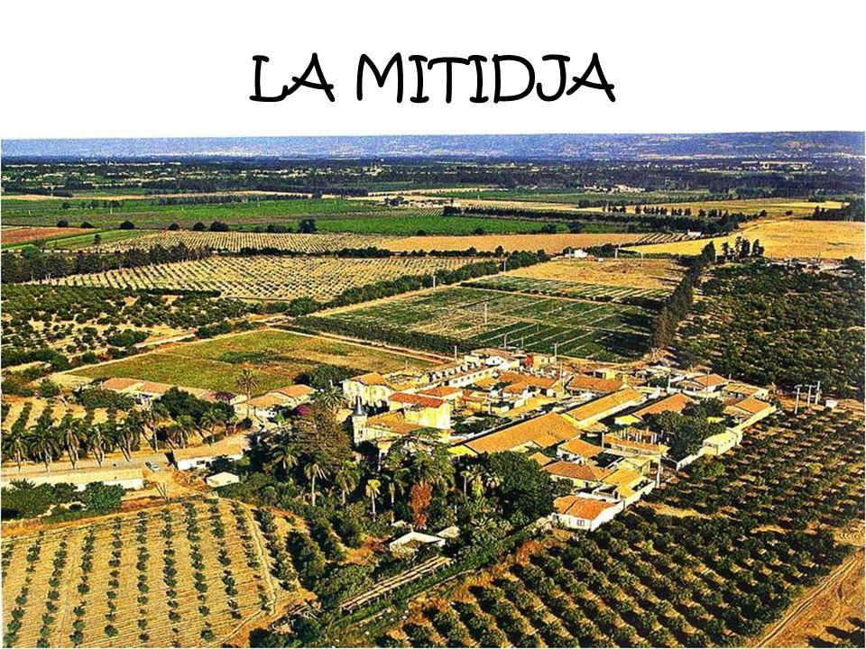 Car il faut savoir quen 1830, A larrivée des français, lagriculture en était restée au Moyen-Age et il faudrait sexcuser davoir créé une agriculture r