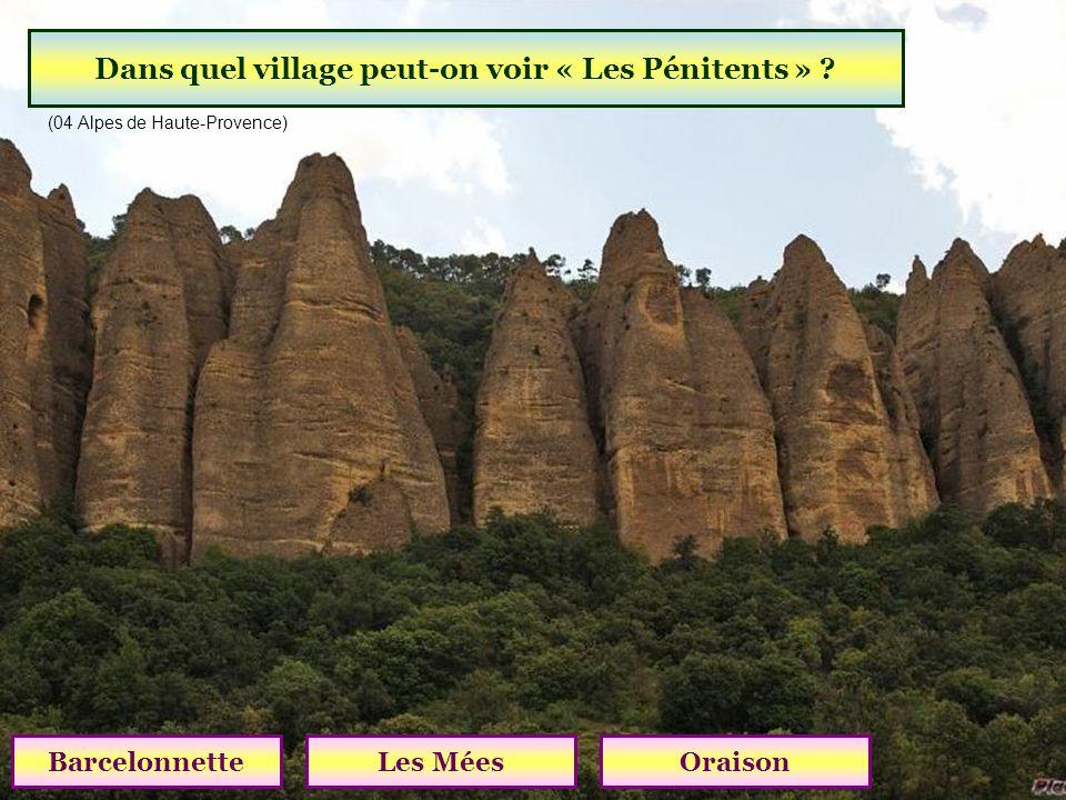 Quel plateau est célèbre pour ses champs de lavande ? Plan de CanjuersPlateau dAlbionPlateau de Valensole (04 Alpes de Haute-Provence)