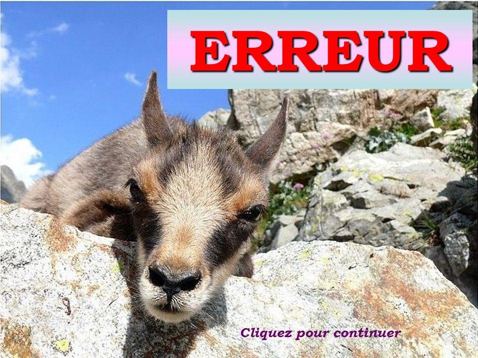 du Sud Les Alpes 5KNA Productions 2012 TEST QUIZ