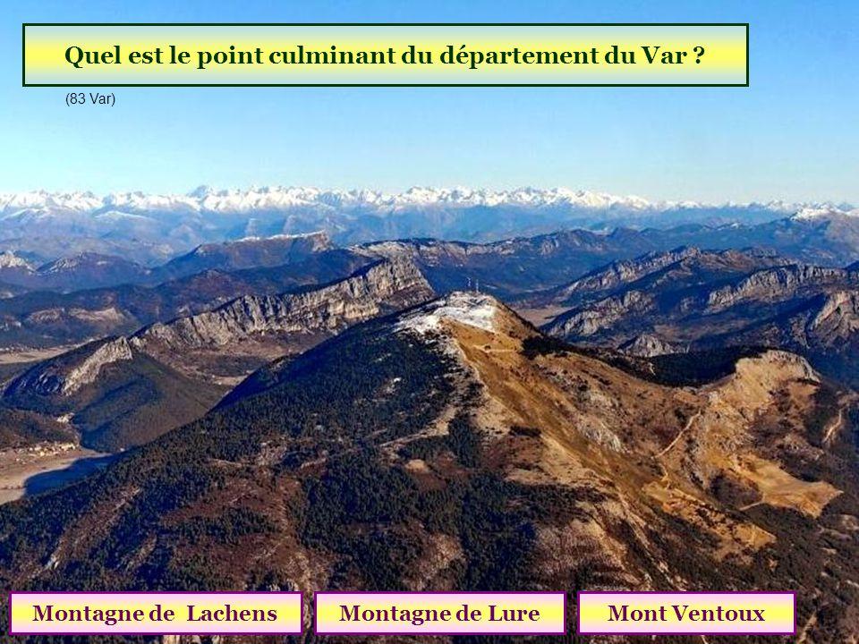 Comment sappelle cette gravure de la Vallée des Merveilles ? Le Berger Le Christ Le Sorcier (06 Alpes Maritimes )