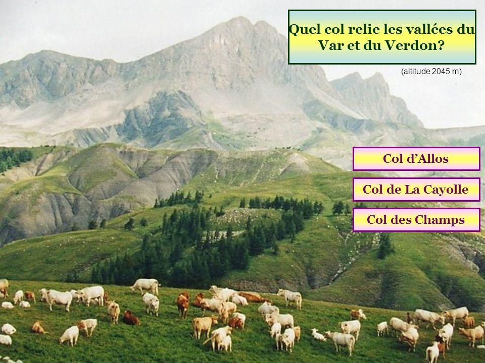 Quelle station est située aux sources du Verdon ? Le SauzePra LoupVal dAllos (04 Alpes de Haute-Provence)