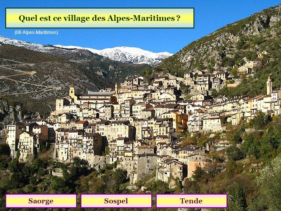 Quel col relie les vallées du Var et du Verdon? Col dAllos Col de La Cayolle Col des Champs (altitude 2045 m)