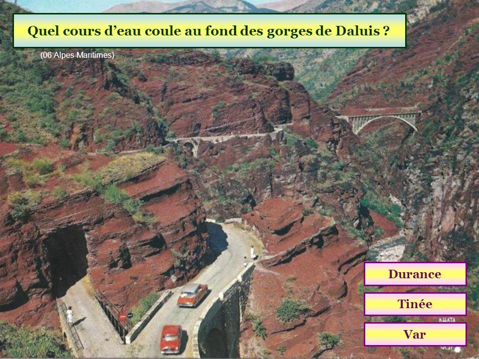 Où peut-on visiter le musée de la préhistoire ? AnnotCastellaneQuinson (04 Alpes de Haute-Provence)