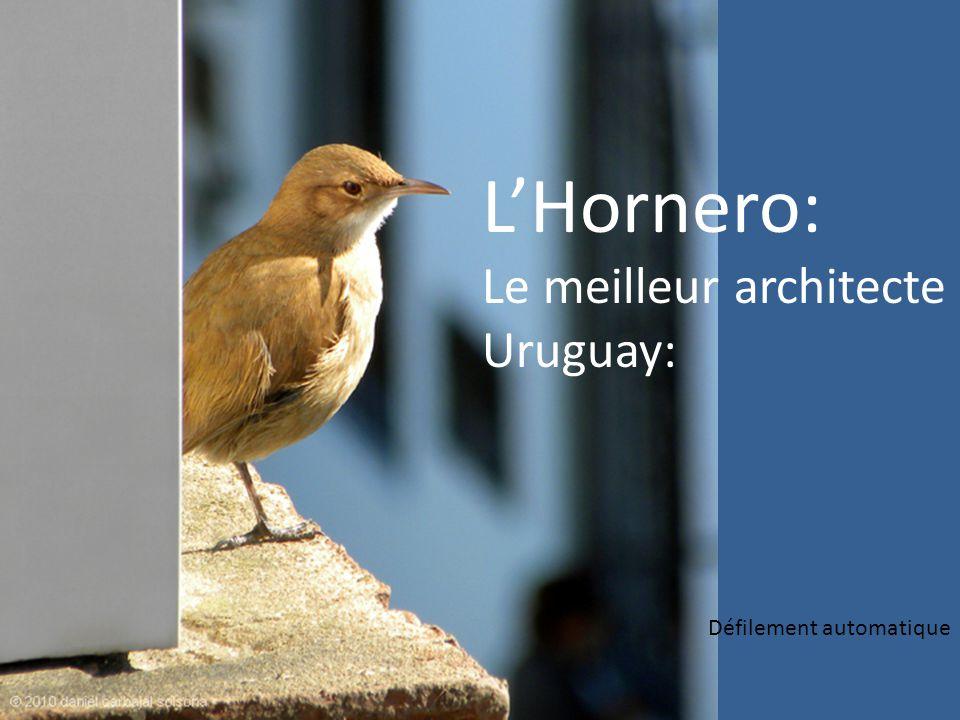 LHornero: Le meilleur architecte Uruguay: Défilement automatique
