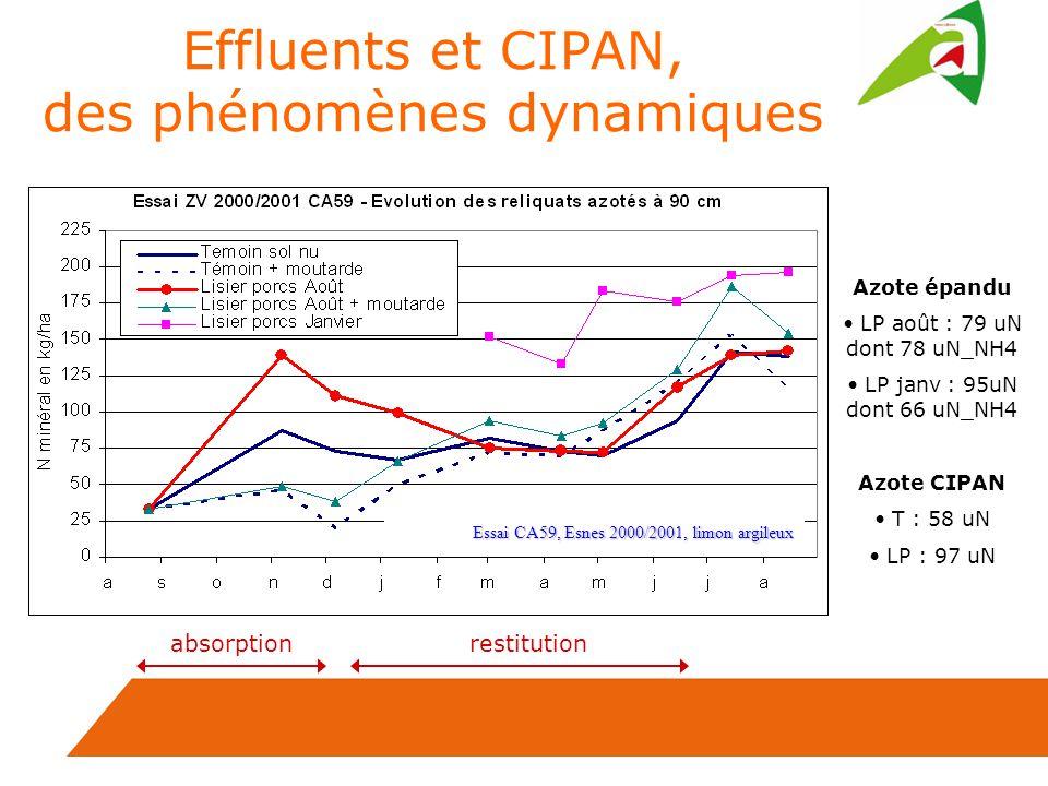 Effluents et CIPAN, des phénomènes dynamiques Azote épandu LP août : 79 uN dont 78 uN_NH4 LP janv : 95uN dont 66 uN_NH4 Azote CIPAN T : 58 uN LP : 97