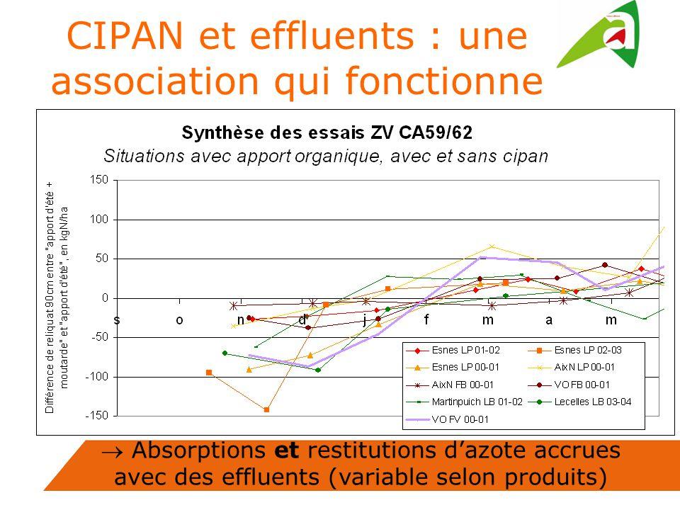 Absorptions et restitutions dazote accrues avec des effluents (variable selon produits) CIPAN et effluents : une association qui fonctionne