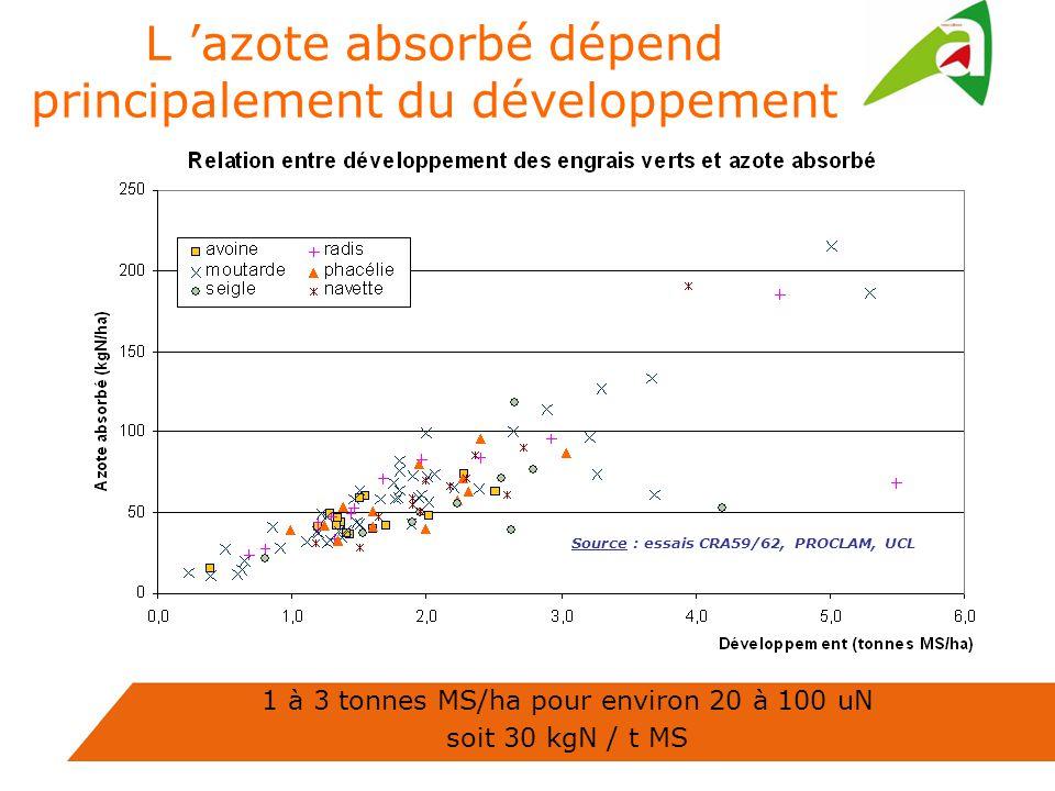1 à 3 tonnes MS/ha pour environ 20 à 100 uN soit 30 kgN / t MS L azote absorbé dépend principalement du développement Source : essais CRA59/62, PROCLAM, UCL