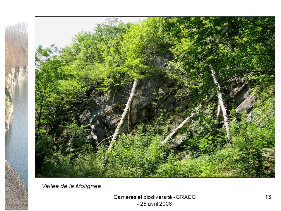 Carrières et biodiversité - CRAEC - 25 avril 2008 13 Vallée de la Molignée