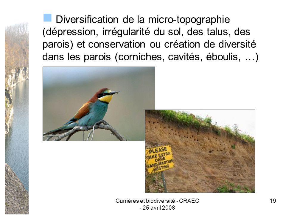 Carrières et biodiversité - CRAEC - 25 avril 2008 19 Diversification de la micro-topographie (dépression, irrégularité du sol, des talus, des parois)