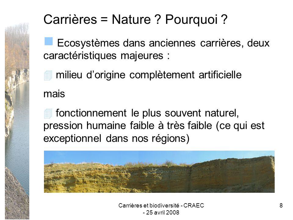 Carrières et biodiversité - CRAEC - 25 avril 2008 19 Diversification de la micro-topographie (dépression, irrégularité du sol, des talus, des parois) et conservation ou création de diversité dans les parois (corniches, cavités, éboulis, …)