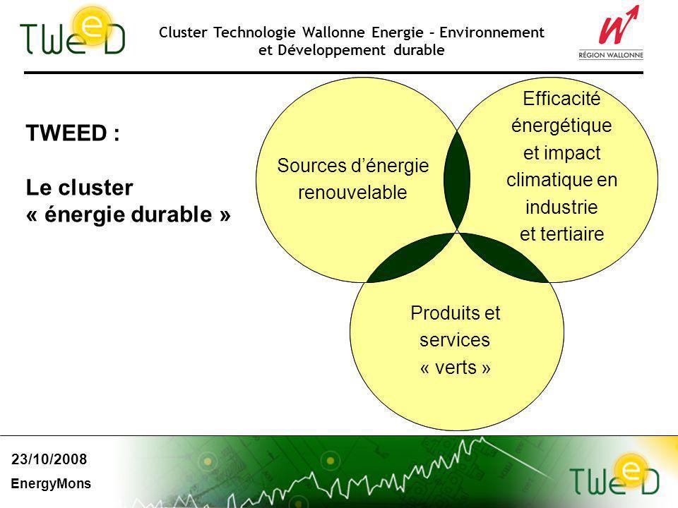 Cluster Technologie Wallonne Energie – Environnement et Développement durable TWEED : Le cluster « énergie durable » Sources dénergie renouvelable Efficacité énergétique et impact climatique en industrie et tertiaire Produits et services « verts » 23/10/2008 EnergyMons
