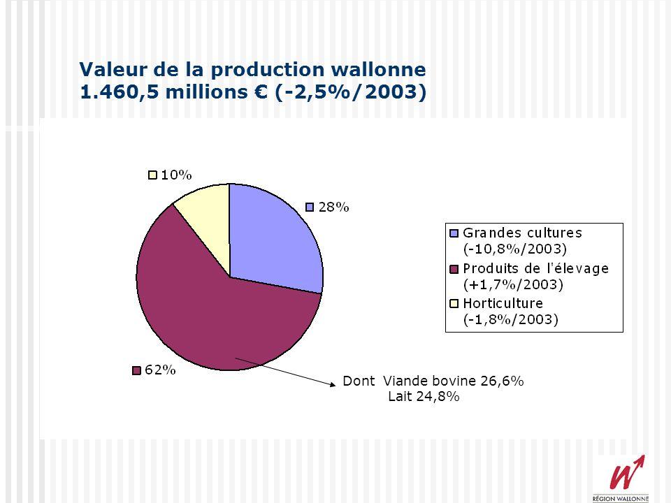 Influence des aides compensatoires 2004 Valeurs globales 1 er Pilier 233,7 millions dont 89,5 secteur végétal (38,4%) 143,8 secteur animal (61,6%) 2 e Pilier 45,5 millions dont 24,0 FIA (52,7%) 11,5 MAE (25,3%)
