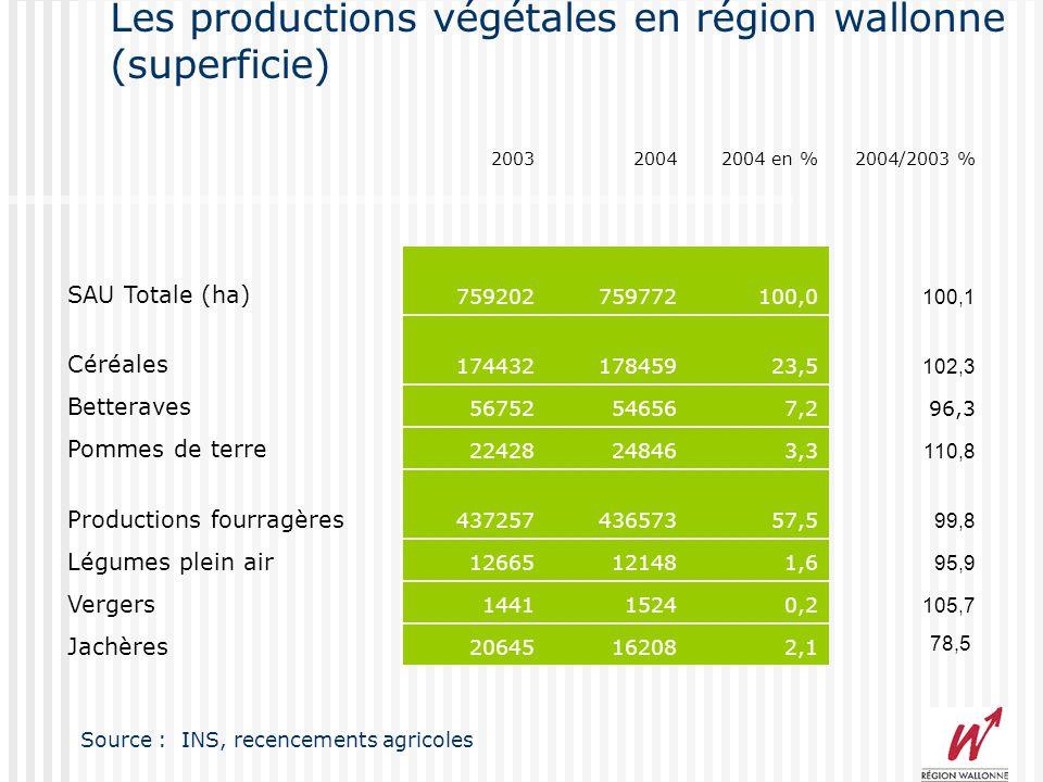 Les productions végétales en région wallonne (superficie) 200320042004 en %2004/2003 % SAU Totale (ha) 759202759772100,0 100,1 Céréales 17443217845923,5 102,3 Betteraves 56752546567,296,3 Pommes de terre 22428248463,3 110,8 Productions fourragères 43725743657357,5 99,8 Légumes plein air 12665121481,6 95,9 Vergers 144115240,2 105,7 Jachères 20645162082,1 Source : INS, recencements agricoles 78,5