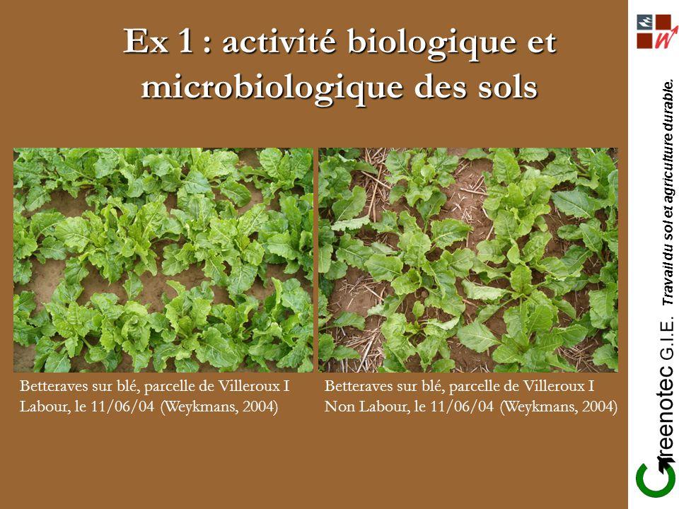 Travail du sol et agriculture durable. Ex 1 : activité biologique et microbiologique des sols Betteraves sur blé, parcelle de Villeroux I Labour, le 1
