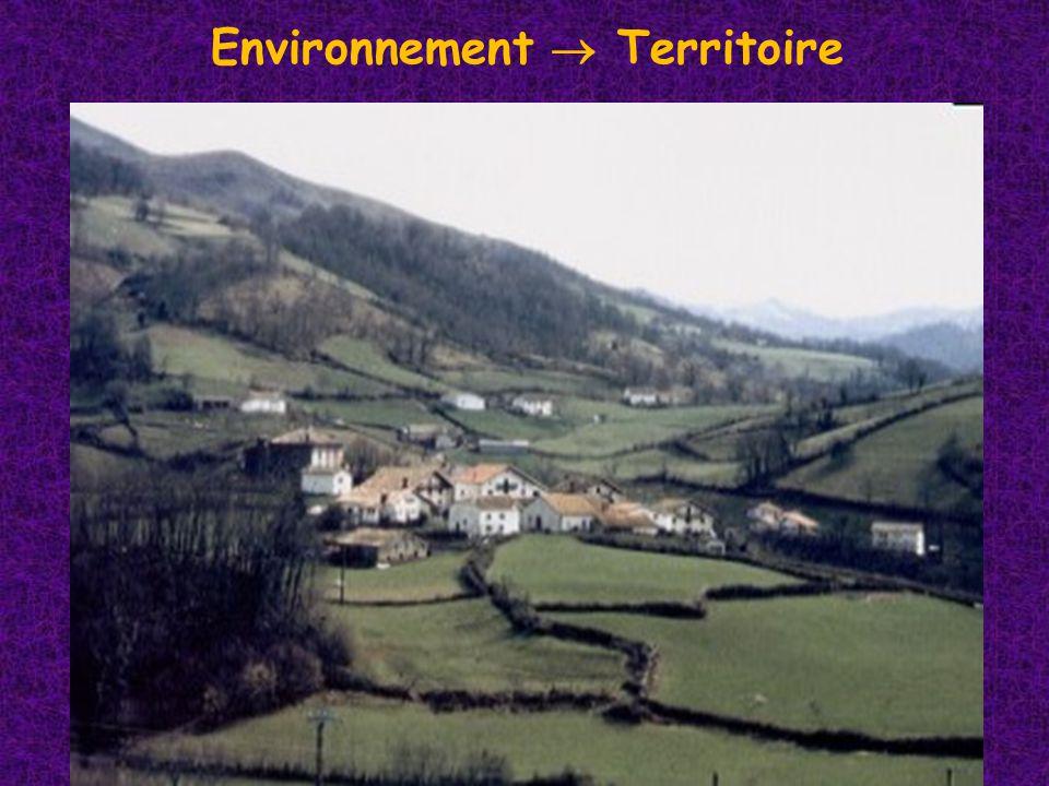 Environnement Territoire