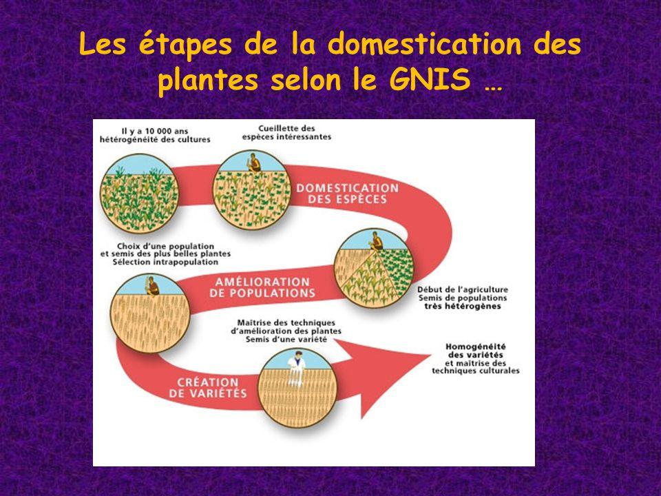 Les étapes de la domestication des plantes selon le GNIS …