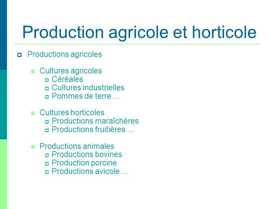 Production agricole et horticole Productions agricoles Cultures agricoles Céréales Cultures industrielles Pommes de terre... Cultures horticoles Produ