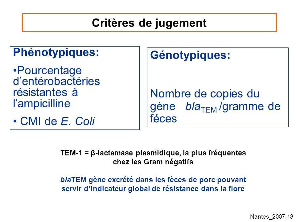 Nantes_2007-13 Critères de jugement Génotypiques: Nombre de copies du gène bla TEM /gramme de féces Phénotypiques: Pourcentage dentérobactéries résistantes à lampicilline CMI de E.