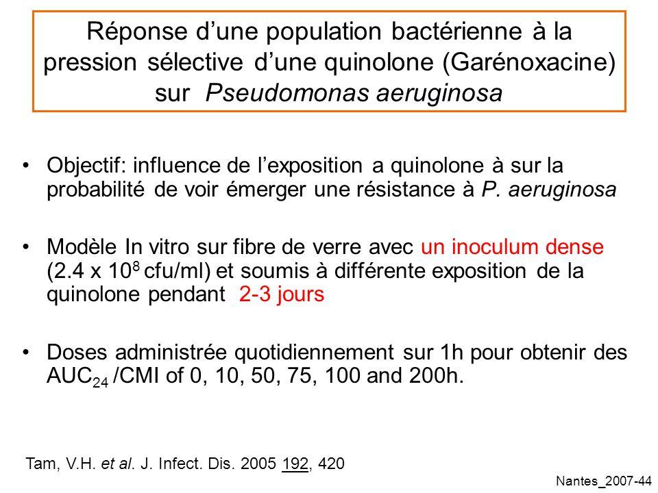 Nantes_2007-44 Réponse dune population bactérienne à la pression sélective dune quinolone (Garénoxacine) sur Pseudomonas aeruginosa Objectif: influence de lexposition a quinolone à sur la probabilité de voir émerger une résistance à P.