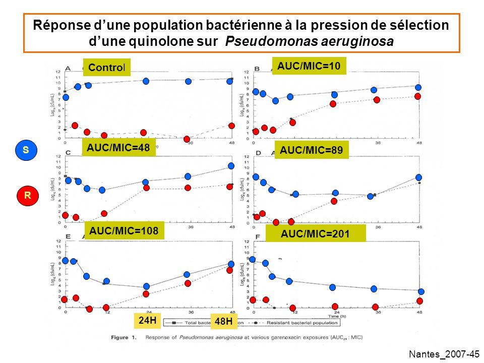 Nantes_2007-45 Réponse dune population bactérienne à la pression de sélection dune quinolone sur Pseudomonas aeruginosa Control AUC/MIC=10 AUC/MIC=48 AUC/MIC=108 AUC/MIC=89 AUC/MIC=201 S R 24H 48H
