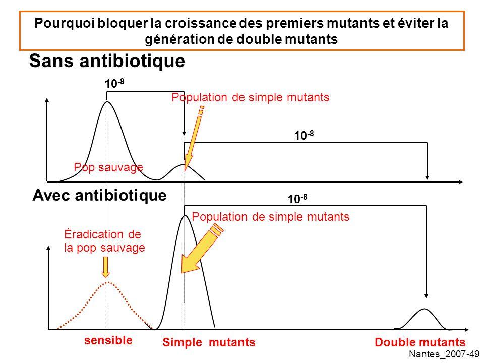 Nantes_2007-49 Sans antibiotique Pourquoi bloquer la croissance des premiers mutants et éviter la génération de double mutants Avec antibiotique 10 -8 Éradication de la pop sauvage sensible Simple mutantsDouble mutants Pop sauvage Population de simple mutants