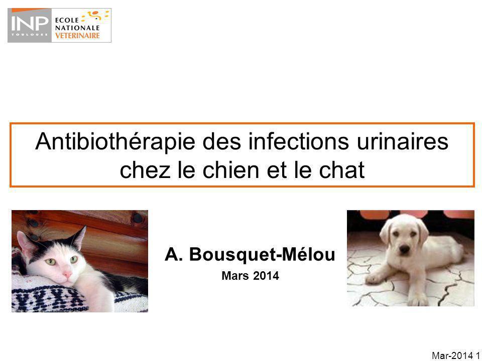 Les biophases des ITU Une ITU nécessite un attachement du pathogène et une colonisation de la muqueuse vésicale Biophases –Bactéries planctoniques (urines) et sessiles (urothelium) –Tissus profonds Mar-2014 22