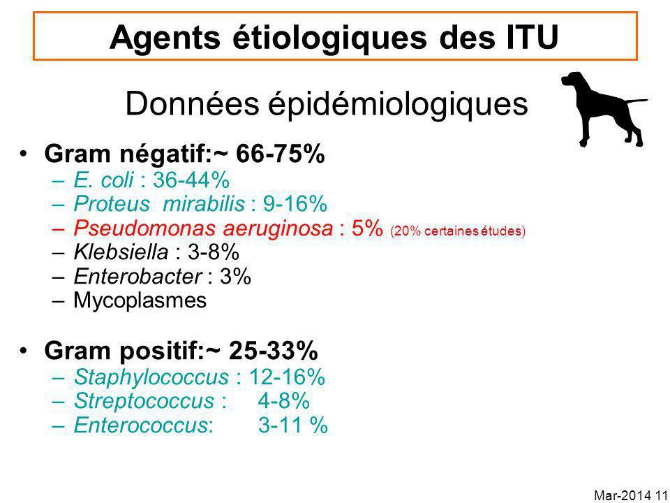 Agents étiologiques des ITU Gram négatif:~ 66-75% –E.