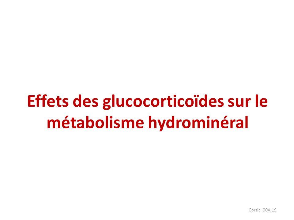 Cortic 00A.19 Effets des glucocorticoïdes sur le métabolisme hydrominéral