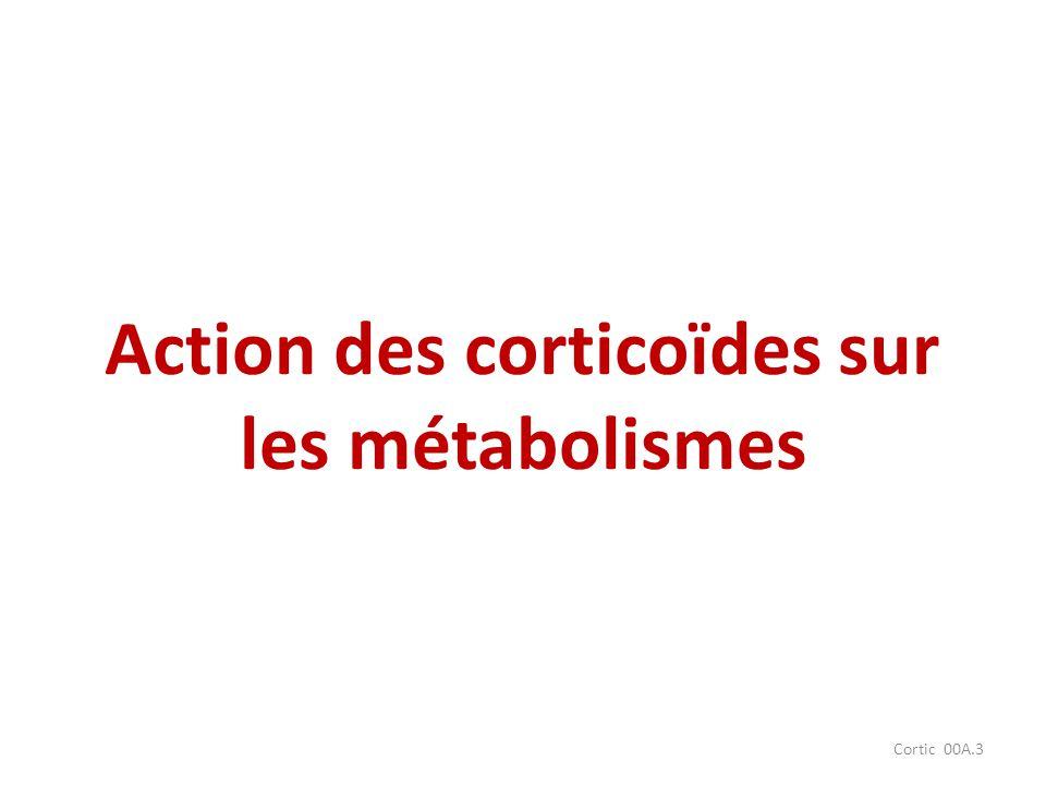 Cortic 00A.3 Action des corticoïdes sur les métabolismes