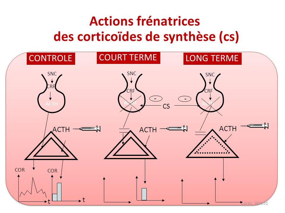 Cortic 00A.31 CONTROLE COURT TERME LONG TERME SNC - - ACTH COR CS CRF COR t t Actions frénatrices des corticoïdes de synthèse (cs) ACTH
