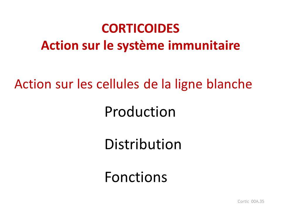 Cortic 00A.35 Production Distribution Fonctions Action sur les cellules de la ligne blanche CORTICOIDES Action sur le système immunitaire