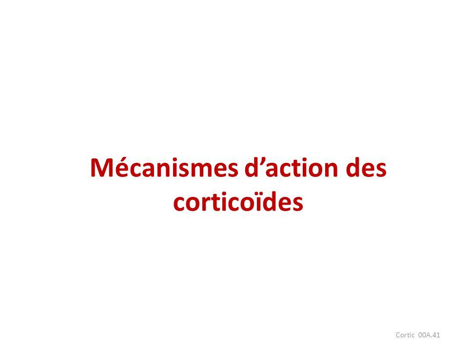 Cortic 00A.41 Mécanismes daction des corticoïdes