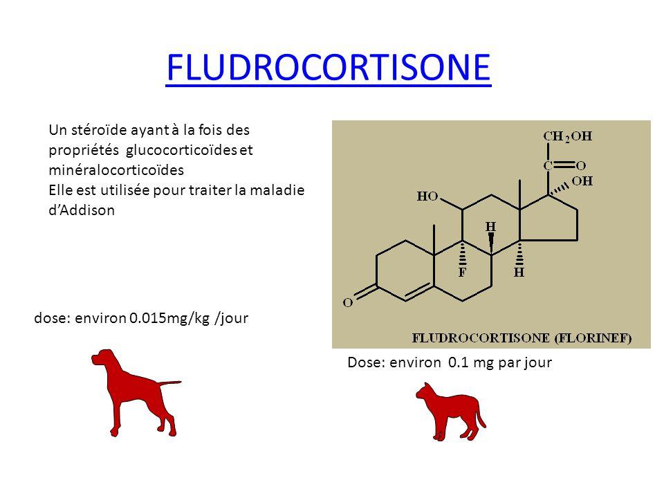 FLUDROCORTISONE Un stéroïde ayant à la fois des propriétés glucocorticoïdes et minéralocorticoïdes Elle est utilisée pour traiter la maladie dAddison