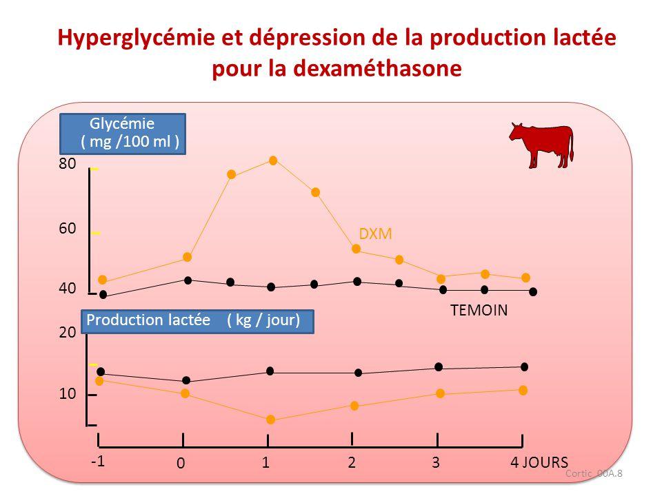 Cortic 00A.8 80 60 40 20 10 Glycémie ( mg /100 ml ) Production lactée ( kg / jour) DXM TEMOIN 0 1234 JOURS Hyperglycémie et dépression de la productio