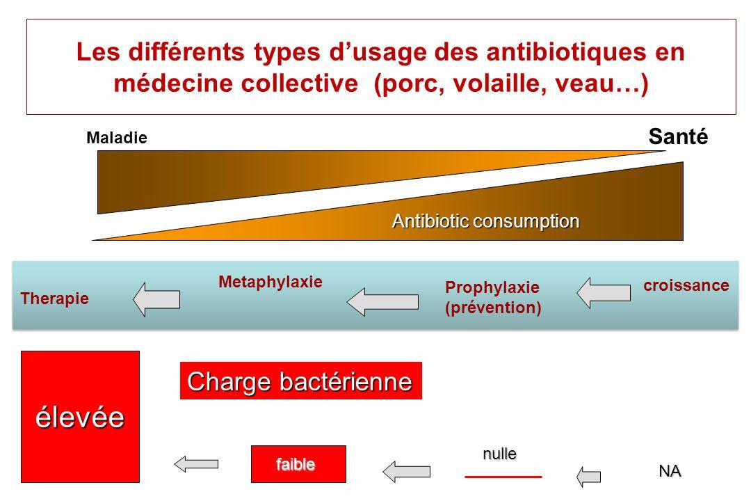 Usage des antibiotiques chez les animaux Antibiothérapie Curative: symptômes présents Metaphylaxie (danger présent) encore nommée prophylaxie en milieu infecté est en fait léquivalent dun traitement très précoce Prophylactique (facteurs de risque présent) Additifs alimentaires (interdit en UE) Croissance Prévention