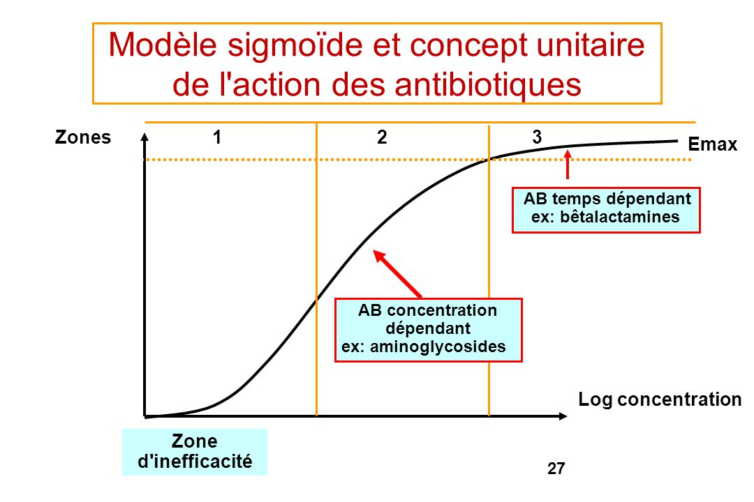 27 Zone d'inefficacité AB temps dépendant ex: bêtalactamines Log concentration Zones123 Emax Modèle sigmoïde et concept unitaire de l'action des antib
