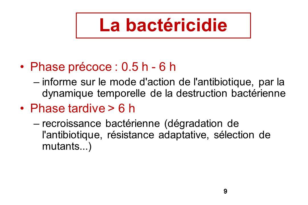 9 Phase précoce : 0.5 h - 6 h –informe sur le mode d'action de l'antibiotique, par la dynamique temporelle de la destruction bactérienne Phase tardive