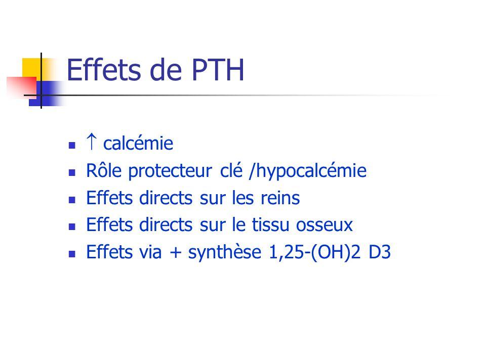 Effets de PTH calcémie Rôle protecteur clé /hypocalcémie Effets directs sur les reins Effets directs sur le tissu osseux Effets via + synthèse 1,25-(O