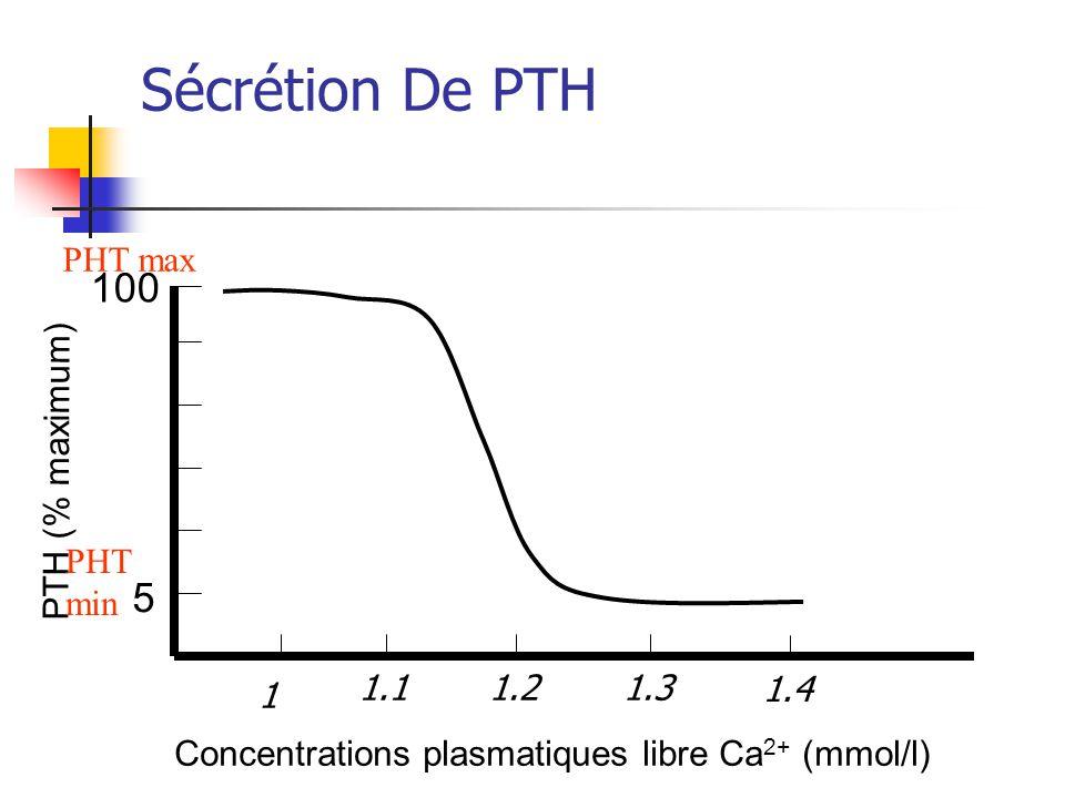 Sécrétion De PTH Concentrations plasmatiques libre Ca 2+ (mmol/l) 5 100 PTH (% maximum) PHT max PHT min 1 1.4 1.11.21.3