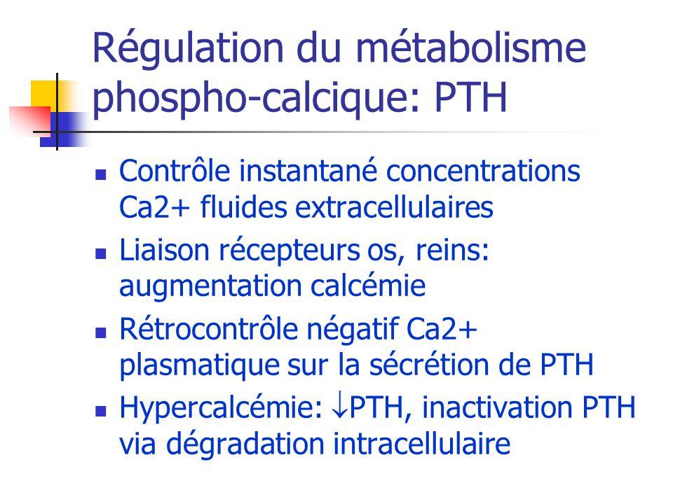 Régulation du métabolisme phospho-calcique: PTH Contrôle instantané concentrations Ca2+ fluides extracellulaires Liaison récepteurs os, reins: augment
