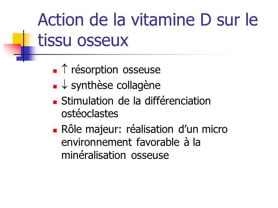 Action de la vitamine D sur le tissu osseux résorption osseuse synthèse collagène Stimulation de la différenciation ostéoclastes Rôle majeur: réalisat