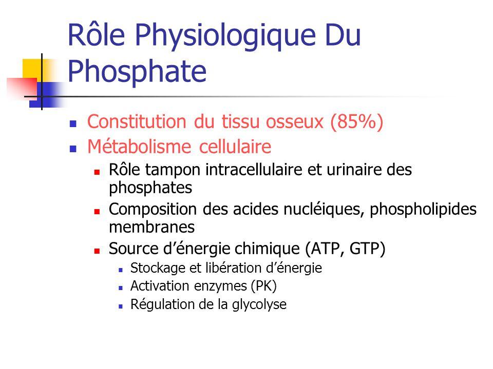 Rôle Physiologique Du Phosphate Constitution du tissu osseux (85%) Métabolisme cellulaire Rôle tampon intracellulaire et urinaire des phosphates Compo